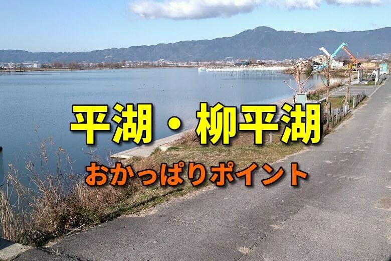 平湖と柳平湖のおかっぱりバス釣りポイント