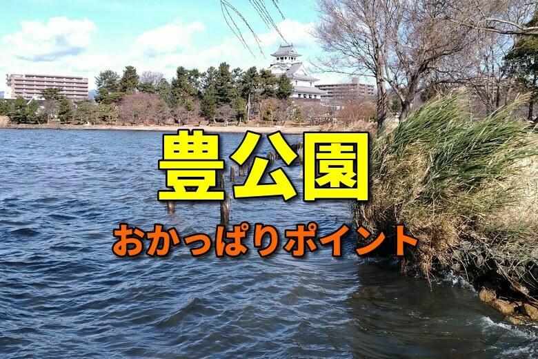 豊公園のおかっぱりバス釣りポイント