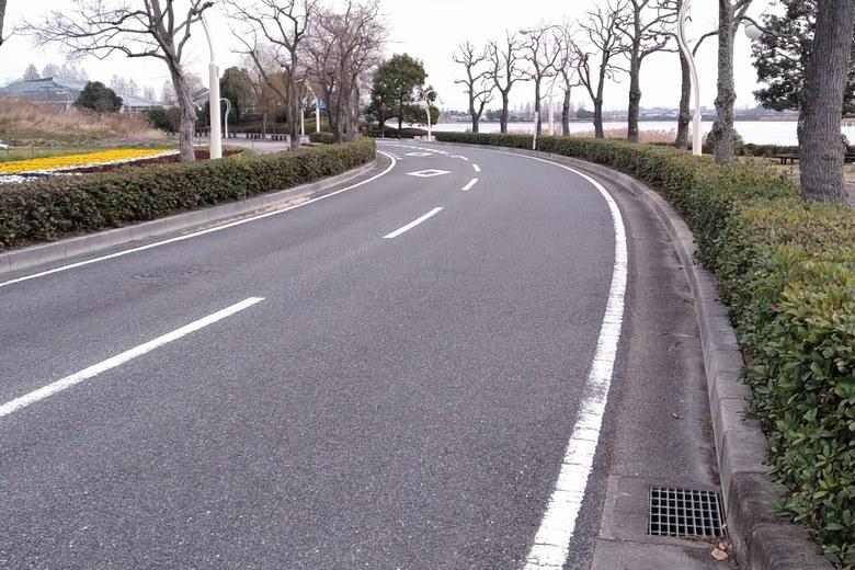 烏丸半島の中の、ハス回廊の道路