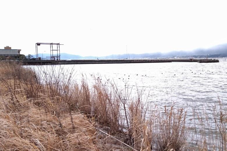 木浜2号水門から見た木浜漁港