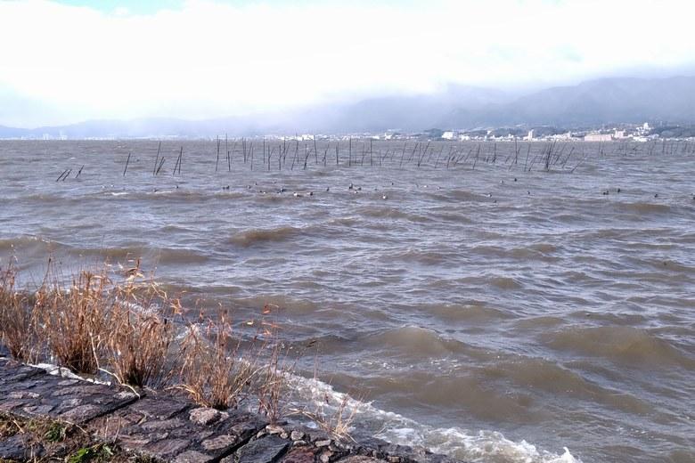 湖岸緑地木浜1の沖に伸びるエリ