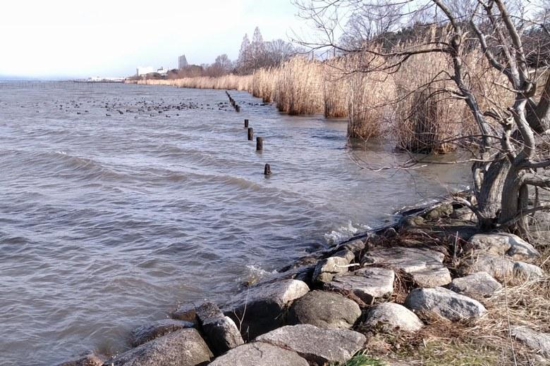 浚渫跡のブレイクが近い、湖岸緑地木浜1の北側