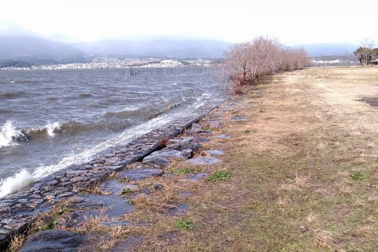 湖岸緑地木浜1の護岸