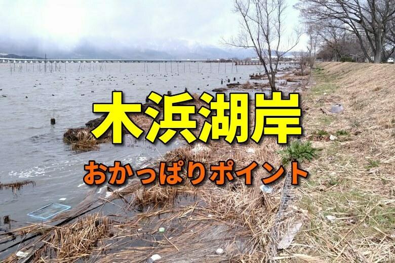 木浜湖岸のおかっぱりバス釣りポイント