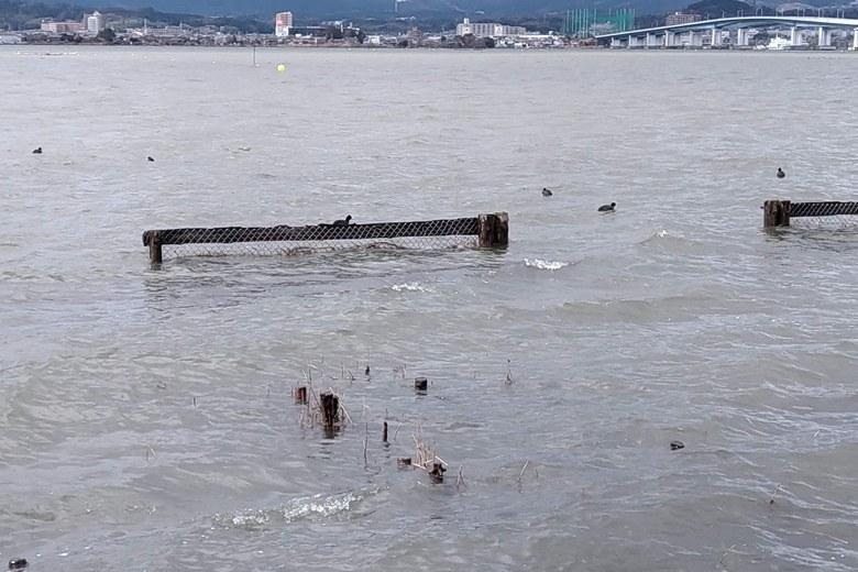 木浜の湖岸にある柵