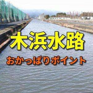 木浜水路のおかっぱりバス釣りポイント