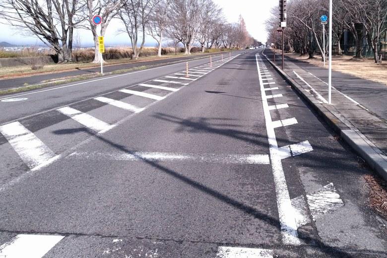 木浜水路の前を通る県道559号線