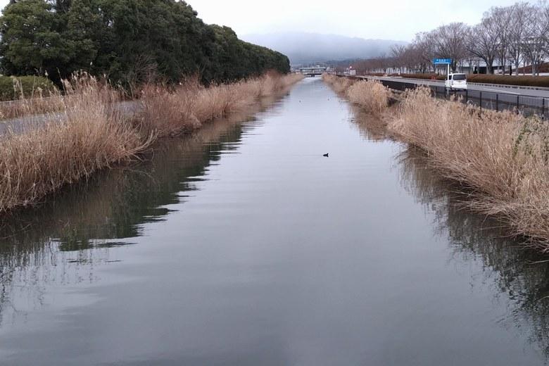 木浜2号水路の様子