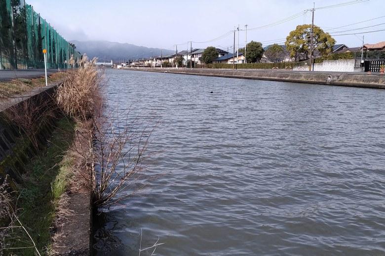 木浜3号水路の様子