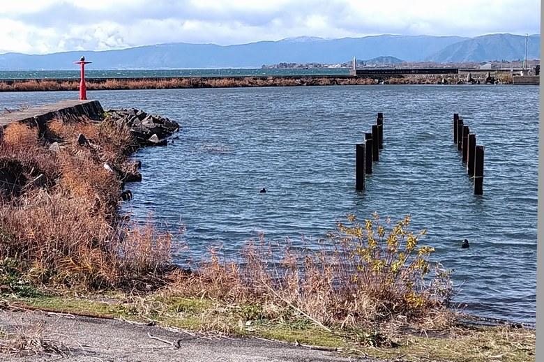 長浜港のスロープと、イケス跡の杭
