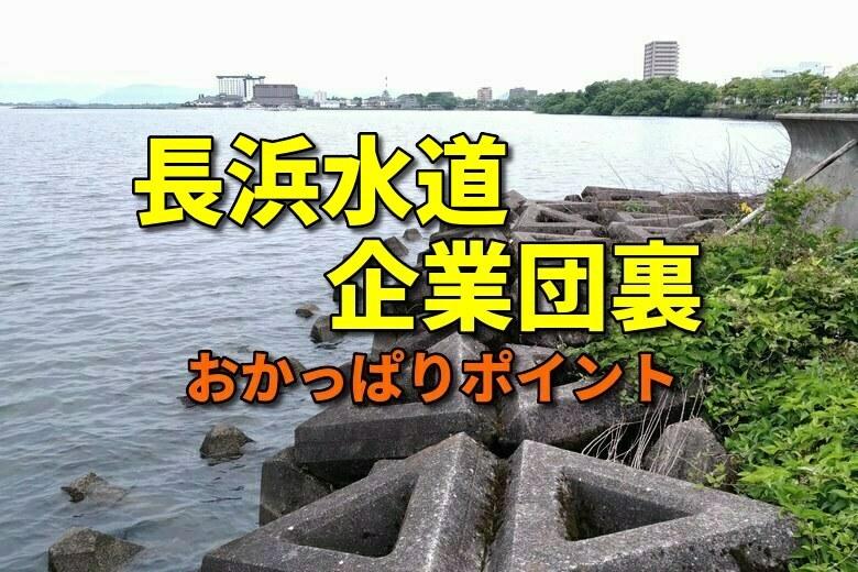 長浜水道企業団裏のおかっぱりバス釣りポイント