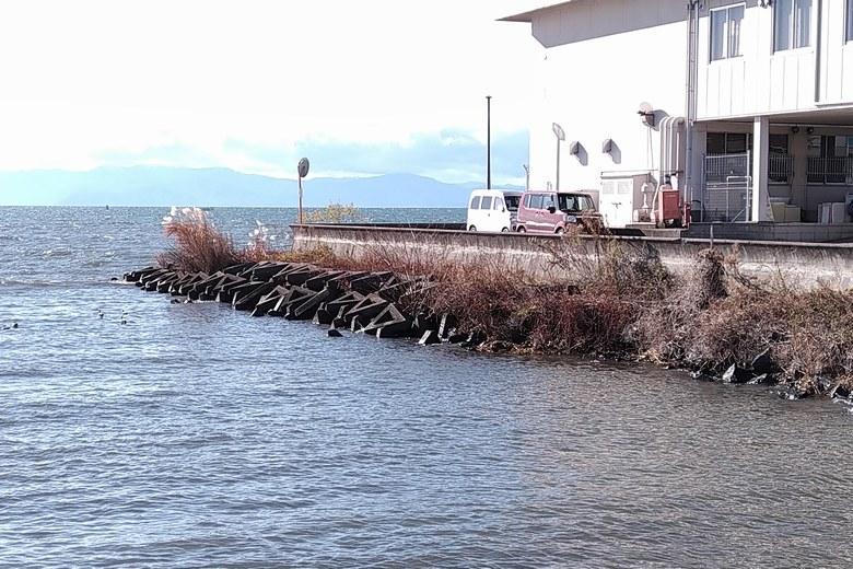 長浜水道企業団裏の、南側のテトラブロック