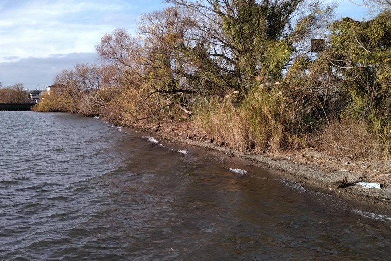 大井川の河口の、北側の岸辺
