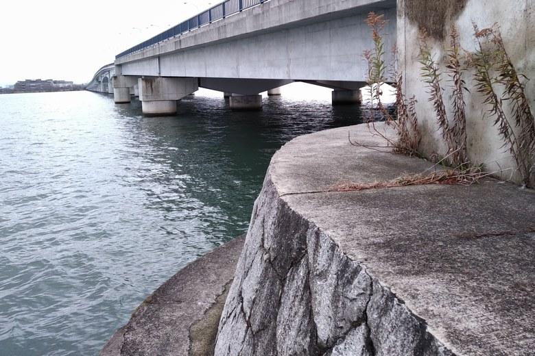 近江大橋の西詰の釣り場