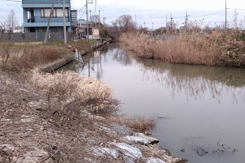 下物内湖から赤野井エリアにつながる水路