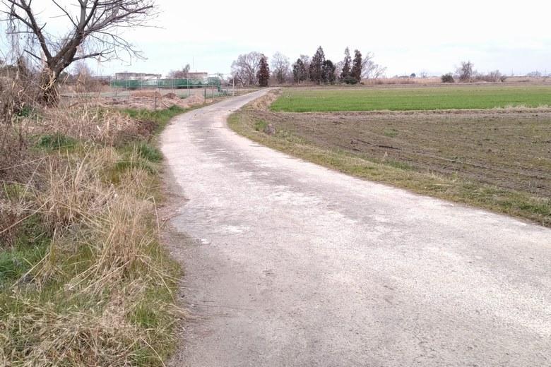 下物内湖の外周の小道
