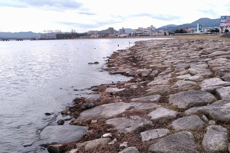 市民プラザの石積み護岸の終わり