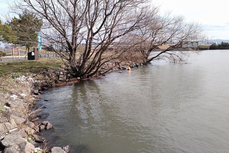葉山川河口近くの石積み護岸