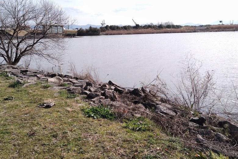 湖岸緑地から見た葉山川の河口