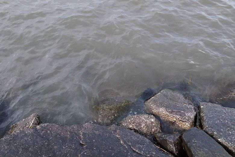 石積み護岸のリップラップ