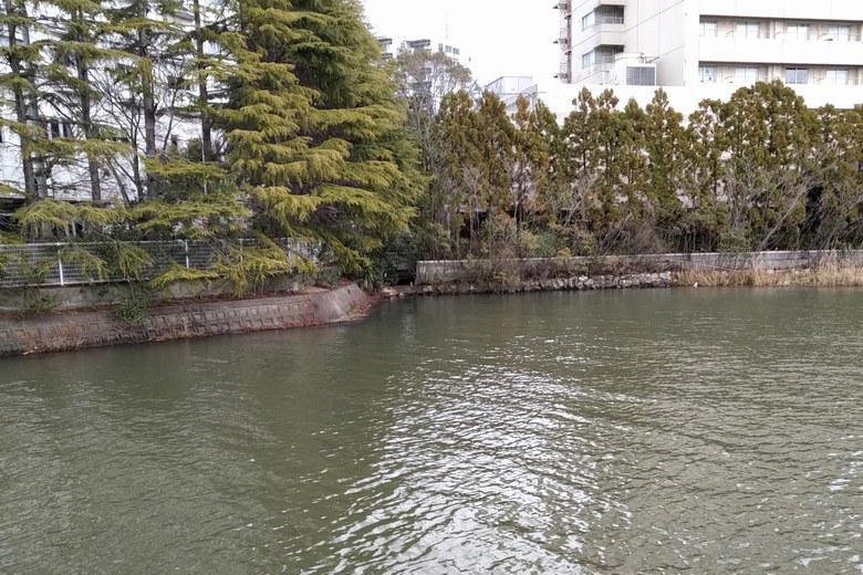 木浜1号水路の北側のエリア