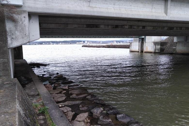 木浜3号水路の橋の下