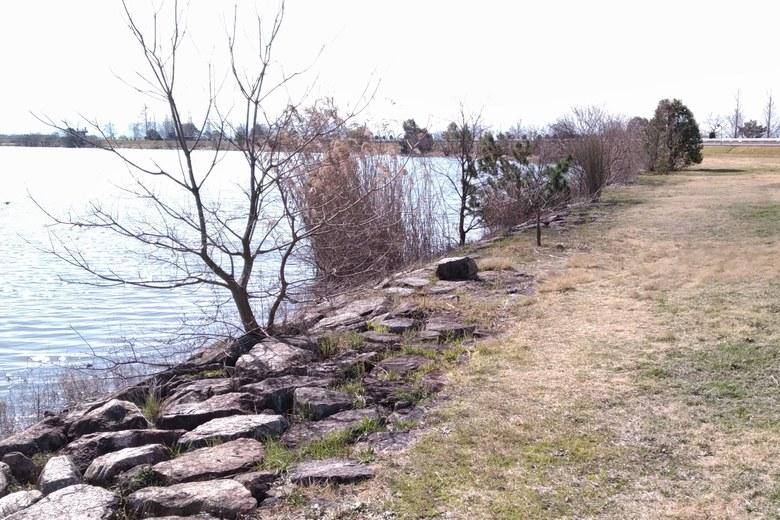 木浜5号水路の石積み護岸