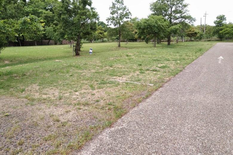 湖岸緑地・細江の駐車場