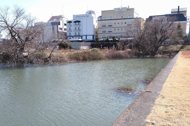 殿田川の、上流エリアの南のブッシュ