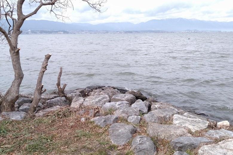 津田江1北の、水門前の角地