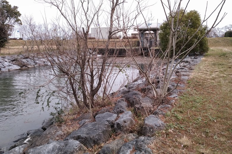 津田江1北にある、50mの水路