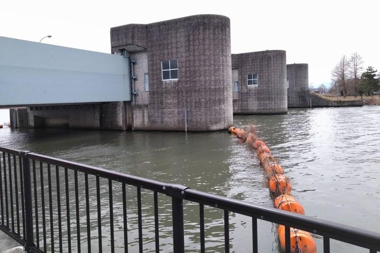 津田江2の南にある水門