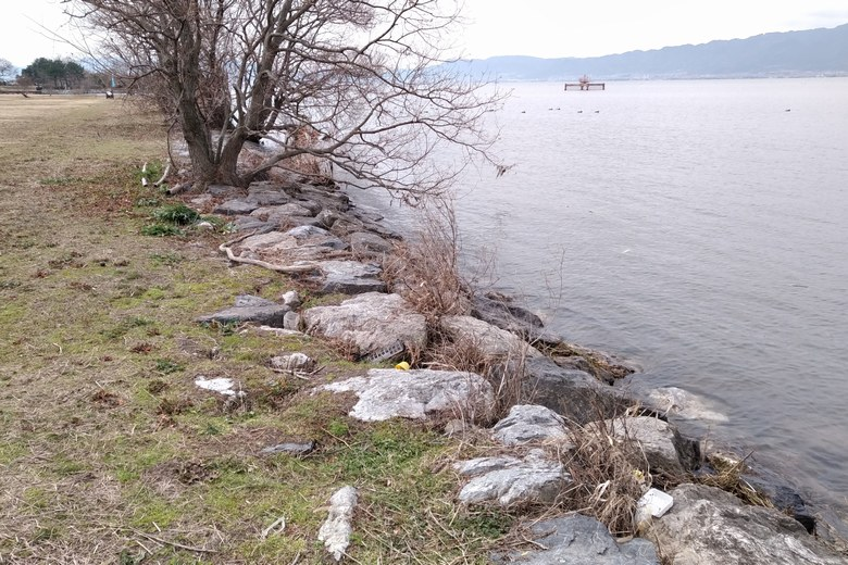 湖岸緑地津田江3の、石積み護岸