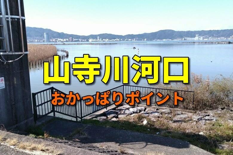 山寺川河口のおかっぱりバス釣りポイント
