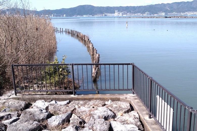 山寺川水門の、南にあるアシ林と保護杭