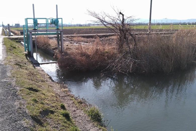 柳平湖の穂k等に流れ込む太田川の導水