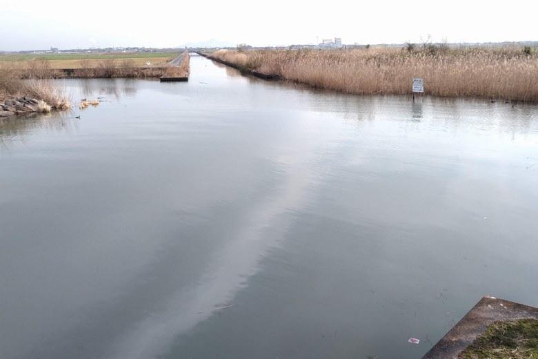 野洲浦と法竜川