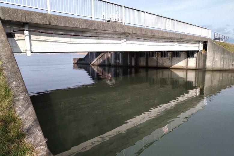 赤野井3の北の水門と野洲浦