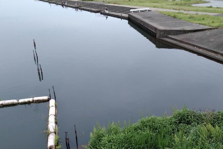 米川河口の杭と、長浜港の護岸