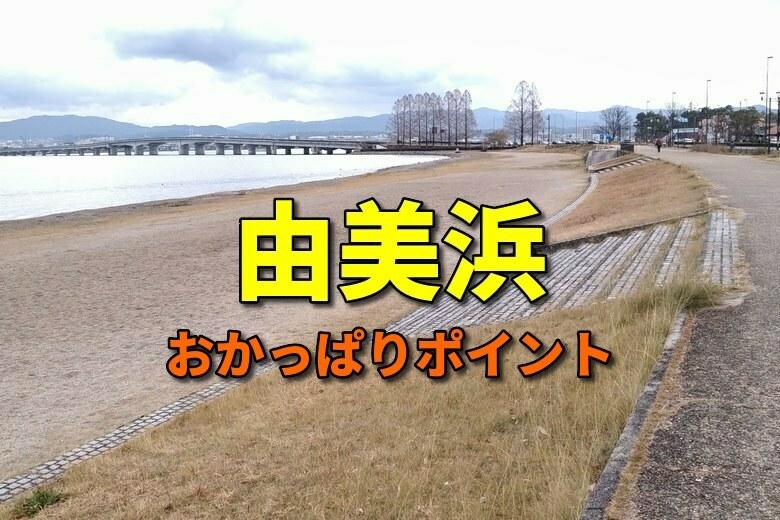 由美浜のおかっぱりバス釣りポイント