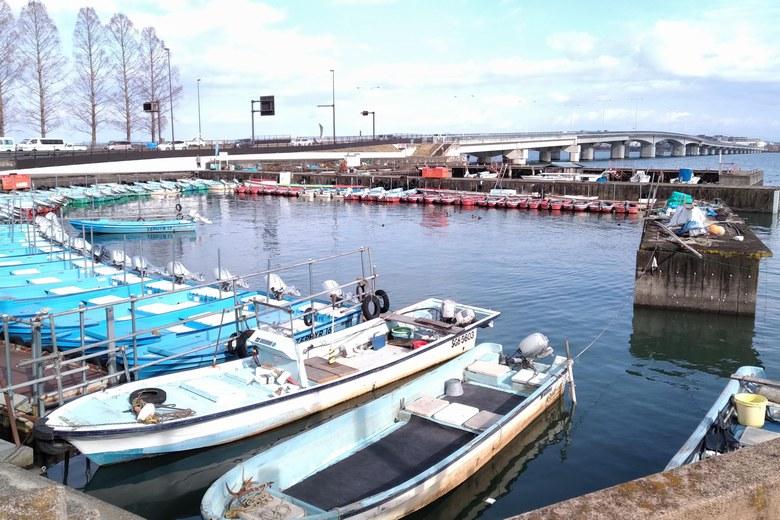 膳所港の船
