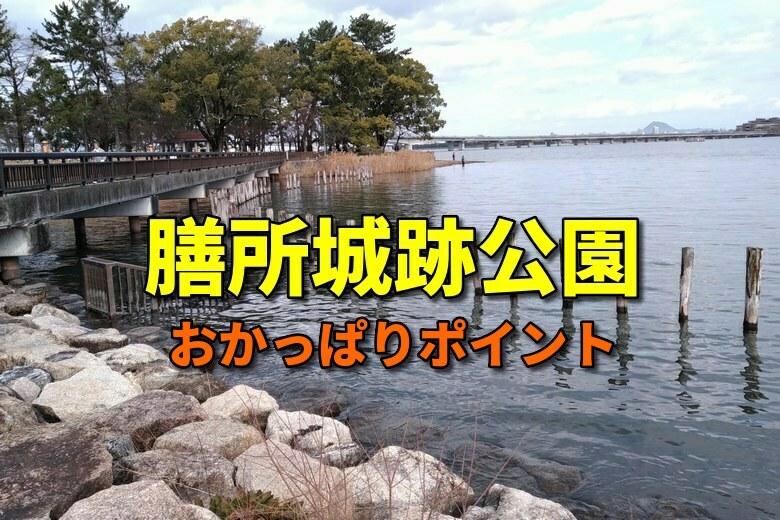膳所城跡公園のおかっぱりバス釣りポイント