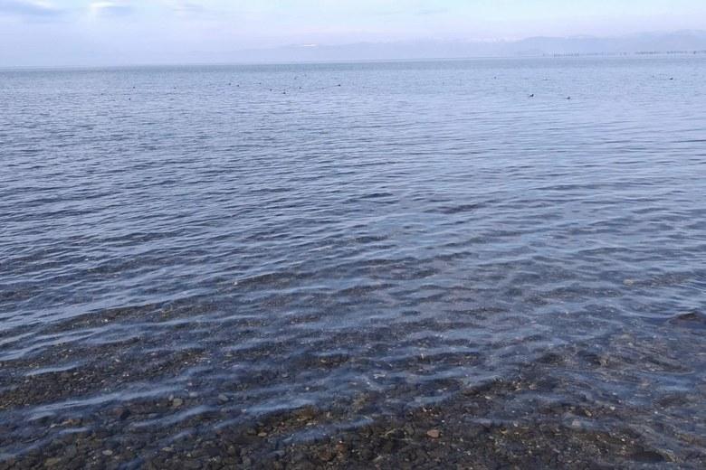 天野川河口の、北側から見た沖