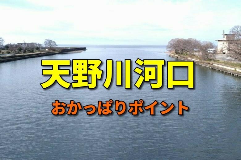 天野川河口のおかっぱりバス釣りポイント