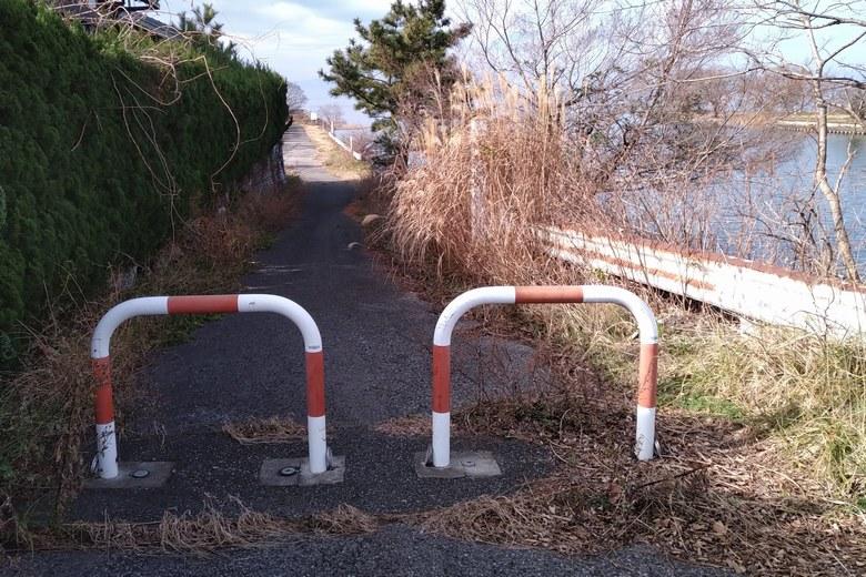 天野川の南岸の細い道