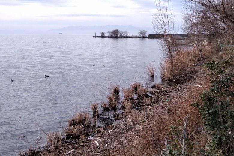 朝妻漁港の近くの岸辺