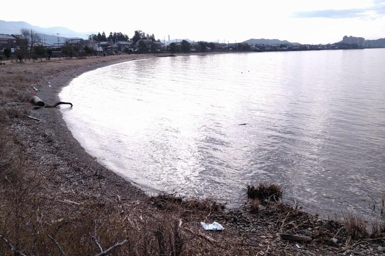 天野川河口の、南側のワンド