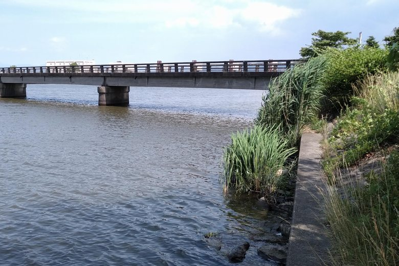 中の湖橋とアシと石積み