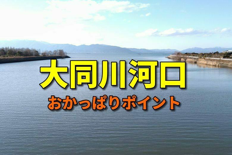 大同川河口のおかっぱりバス釣りポイント