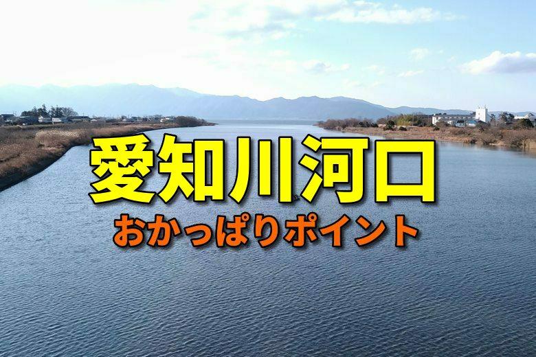 愛知川河口のおかっぱりバス釣りポイント